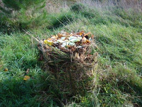 Potager vertical - Automne foin d'herbe + épluchures